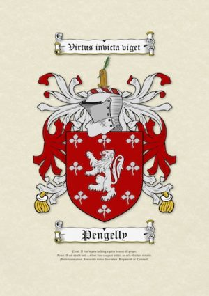 A3 Printed Coat of Arms (Family Crest)